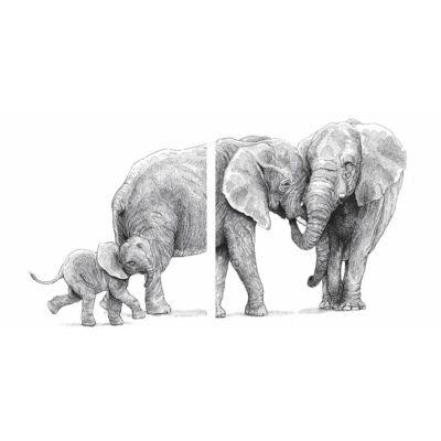 Elefánt család - 2 db - átlátszó csempematrica