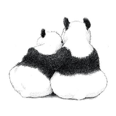 Pandák - átlátszó csempematrica