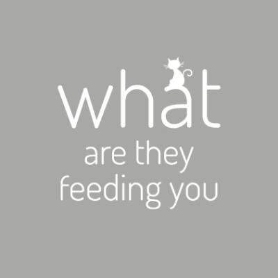 What are they feeding you - Friends - csempematrica