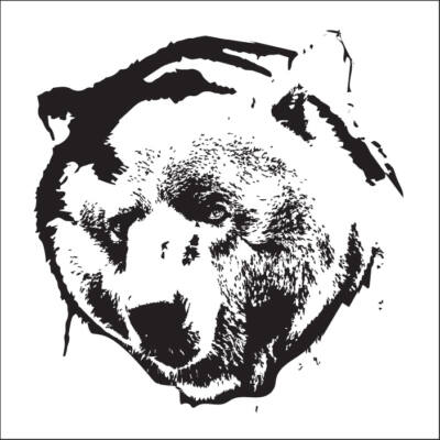 Medve csempematrica