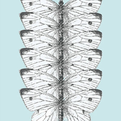 Pillangók csempematrica