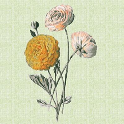 Virág SZÍNES csempematrica
