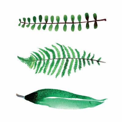levelek akvarell csempematrica