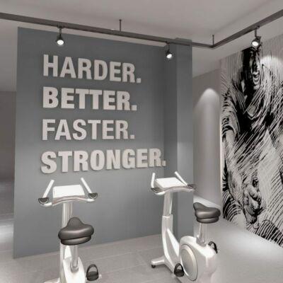 Harder, Better, Faster 3D Gym - falmatrica